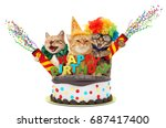 funny cats with petard and... | Shutterstock . vector #687417400