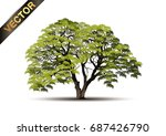 tree isolated on a white... | Shutterstock .eps vector #687426790