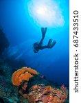 wonderful underwater world with ... | Shutterstock . vector #687433510