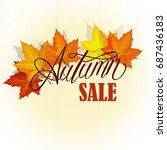 beautiful hand drawn autumn... | Shutterstock . vector #687436183