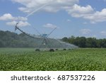 Irrigation Spraying A Field Of...