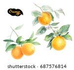orange watercolor illustration. ... | Shutterstock . vector #687576814