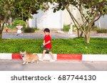 asian boy walk with pembroke... | Shutterstock . vector #687744130