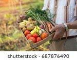 senior gardener with a... | Shutterstock . vector #687876490