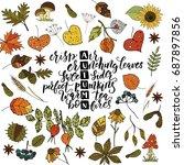 handdrawn unique autumn card... | Shutterstock .eps vector #687897856