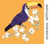 toucan embroidery  vector ...   Shutterstock .eps vector #687911440