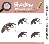 shadow matching game of... | Shutterstock .eps vector #687941254