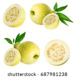guava isolated on white... | Shutterstock . vector #687981238