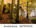 autumn forest in the vosges... | Shutterstock . vector #687993520