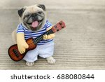 Indy Musician Guitarist Pug Do...