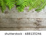 frame from fern leaves on old... | Shutterstock . vector #688135246