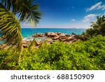 palm trees of tropical beach... | Shutterstock . vector #688150909