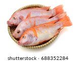 fresh red tilapia fish in... | Shutterstock . vector #688352284