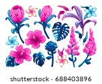 tropical flowers and leaves.... | Shutterstock .eps vector #688403896