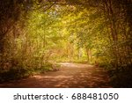 the empty way in forest and... | Shutterstock . vector #688481050