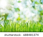 green nature background with... | Shutterstock . vector #688481374
