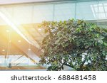 eco building or green office... | Shutterstock . vector #688481458