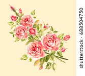 watercolor pink roses. vintage... | Shutterstock . vector #688504750