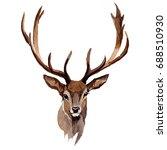 reindeer wild animal in a...   Shutterstock . vector #688510930
