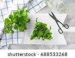lemon balm with scissors on... | Shutterstock . vector #688533268