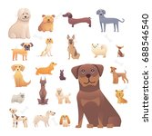 group of purebred dogs.... | Shutterstock . vector #688546540