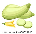 Zucchini Isolated On Backgroun...