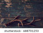 Shed Antlers For A Buck Or Deer ...