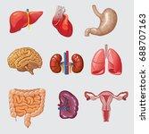 cartoon human organs set | Shutterstock .eps vector #688707163