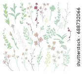 colorful hand drawn herbs ... | Shutterstock . vector #688732066