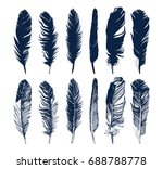 hand drawn feathers and their... | Shutterstock .eps vector #688788778