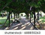 tree tunnel    Shutterstock . vector #688850263