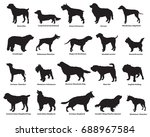 Vector Set Of Different Breeds...