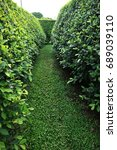 A Long Green Path And Walls In...