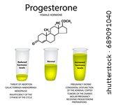 the chemical molecular formula... | Shutterstock .eps vector #689091040