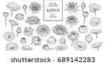 set of isolated lotus in 32... | Shutterstock .eps vector #689142283