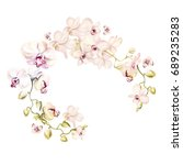 watercolor wreath with orchid...   Shutterstock . vector #689235283