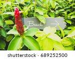 signpost to the beach | Shutterstock . vector #689252500