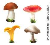 Realistic Mushrooms Set Of Fou...