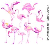 beautiful watercolor flamingos... | Shutterstock . vector #689320414