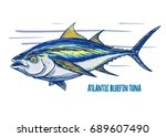 atlantic bluefin tuna.hand... | Shutterstock .eps vector #689607490