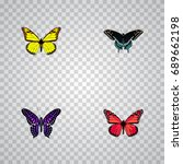 realistic archippus  morpho... | Shutterstock .eps vector #689662198