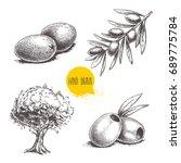 sketch hand drawn olives set....