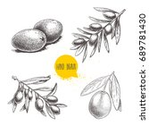 sketch hand drawn olives set.... | Shutterstock .eps vector #689781430