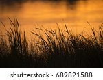 sunset of the waterhole in... | Shutterstock . vector #689821588