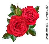 flower composition. a bud of a... | Shutterstock . vector #689869264