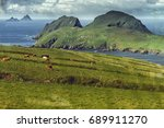 Skellig Islands  Puffin Island...