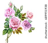 bouquet of roses in watercolor | Shutterstock . vector #689951938