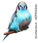 cordon blue bird drawing | Shutterstock . vector #689965666