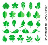 growing plants. leaf and grass... | Shutterstock . vector #690045484