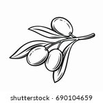 olive with leaves vector label... | Shutterstock .eps vector #690104659